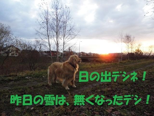 CIMG2749_P.jpg