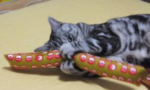 猫ダルマ落とし店主1