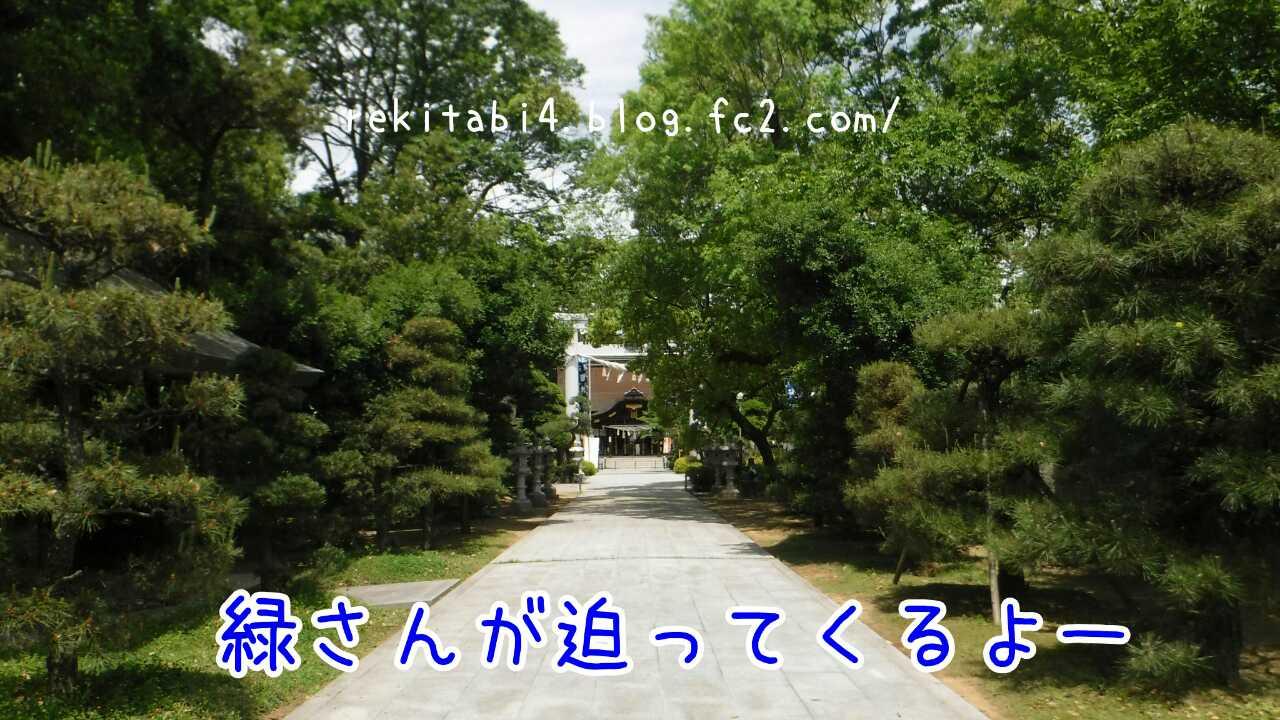 20160512222503688.jpg
