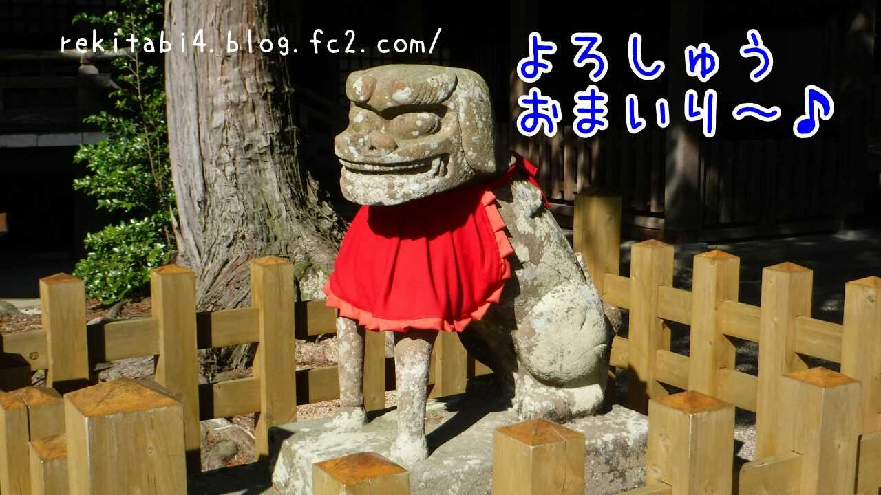 20160527013213215.jpg