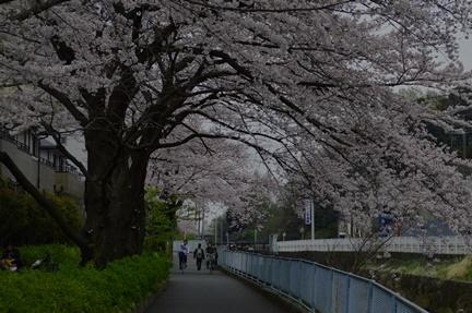 2016-04-02_29.jpg