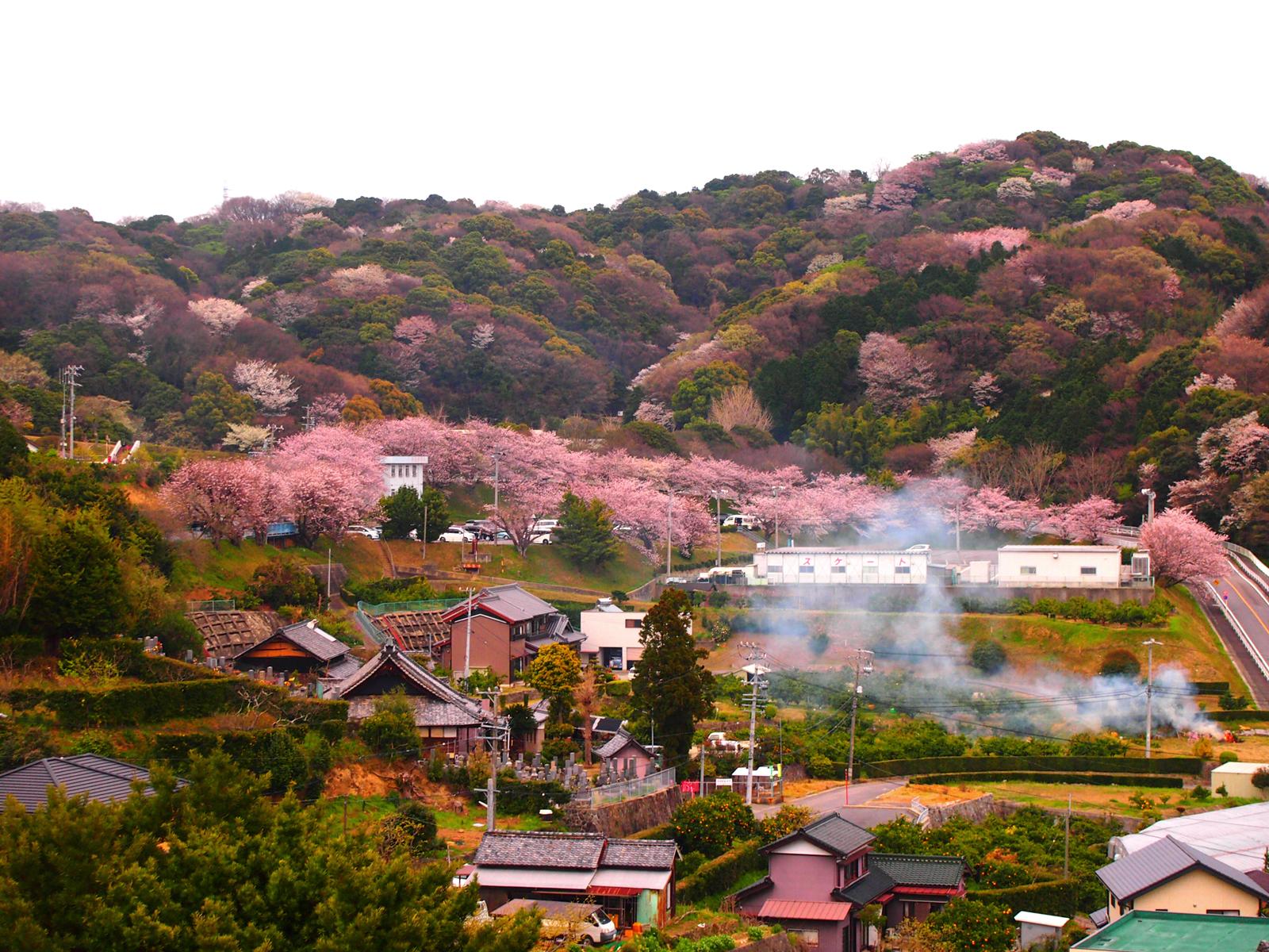 【第231話】愛知県西尾市
