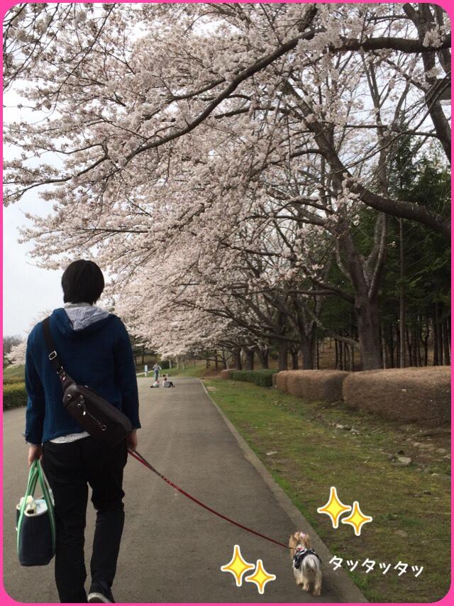 fc2blog_201604121618405b5.jpg