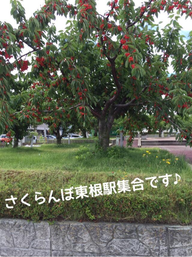 fc2blog_20160627093950d4c.jpg