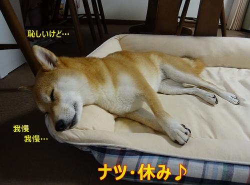 5ナツ休み