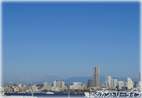 北海道新幹線の旅♪