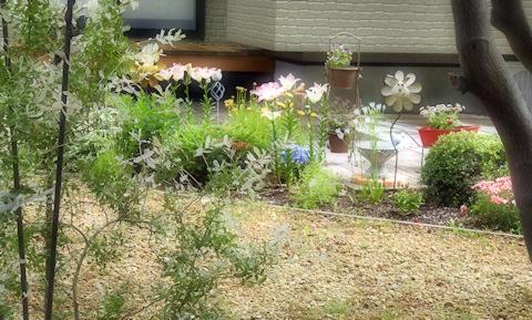 庭にスズメの子