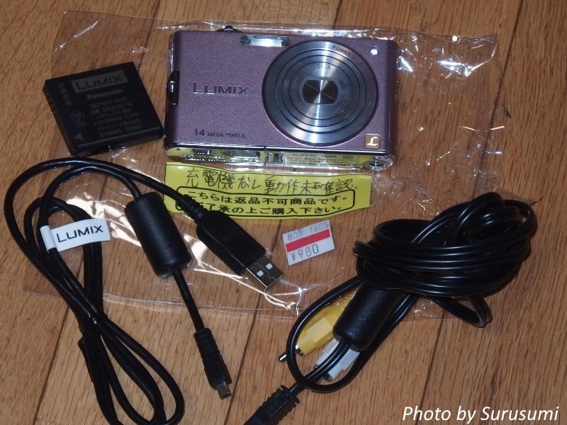 P5040090-33s.jpg