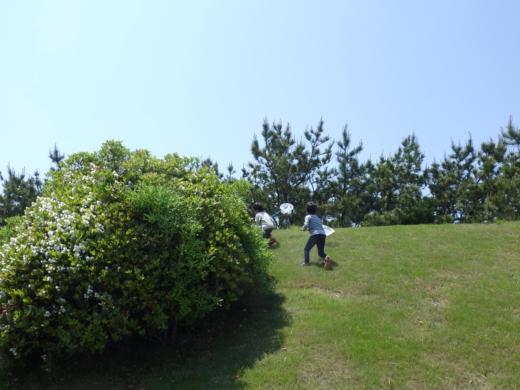 大東温泉シートピア (3)