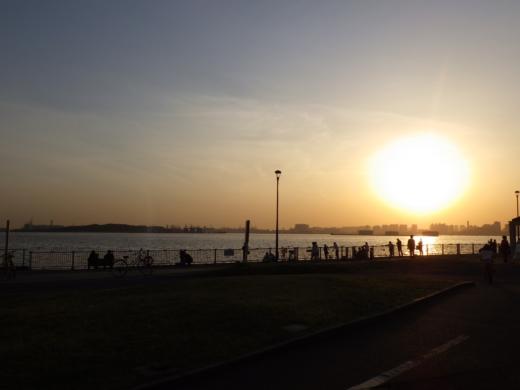 若洲海浜公園2 (18)