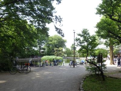 赤塚公園 (4)