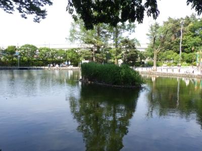 赤塚公園 (8)