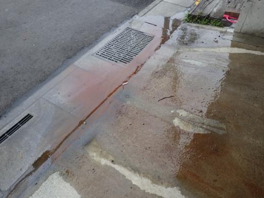 水路清掃 (13)
