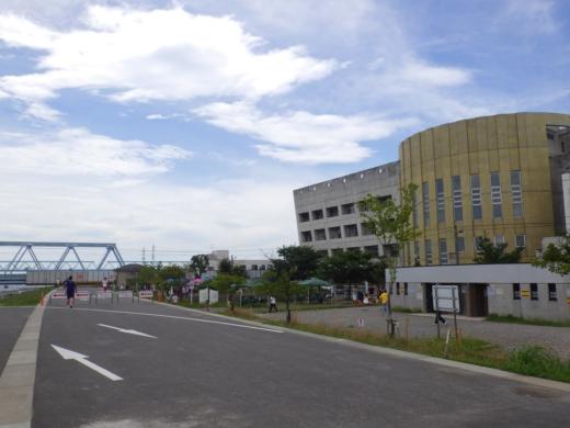 江戸川放水路ハゼ釣り (15)