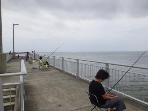 飯岡漁港釣り (13)