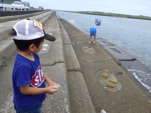 飯岡漁港釣り (25)
