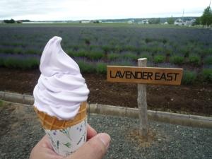 ラベンダーチョコアイス