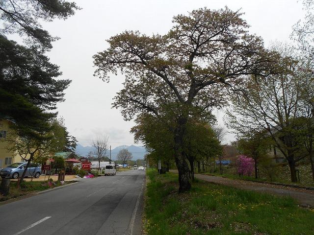 DSCN2640.jpg