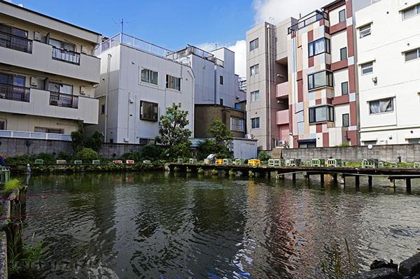 寿々木園038
