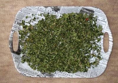 ダイエットに良い柿の葉の茶を作りました。
