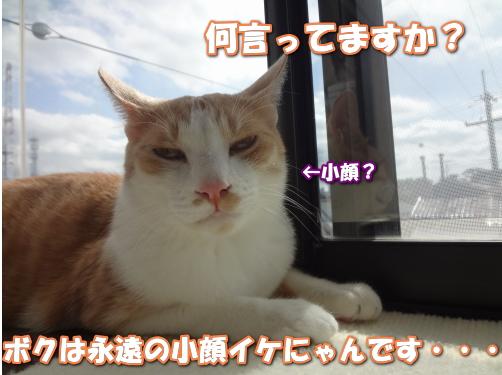 20160625001610851.jpg
