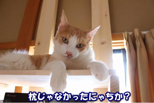 201607171843100e1.jpg
