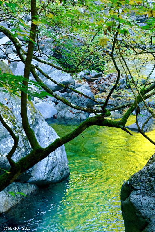 絶景探しの旅 - 0751 黄色に水面が染まる渓谷 (西沢渓谷 山梨県 山梨市)